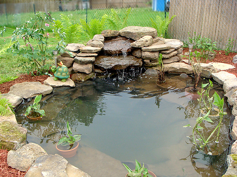 Pond for Small fish ponds with waterfalls